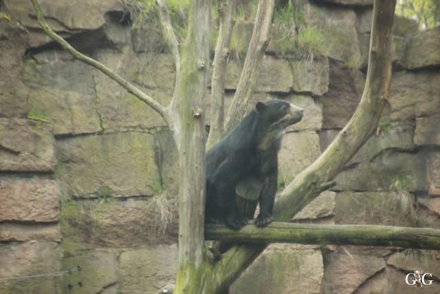 Besuch Tierpark Friedrichsfelde 17.04.201616