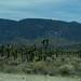High Desert 68