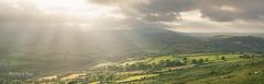 Rural Radiance