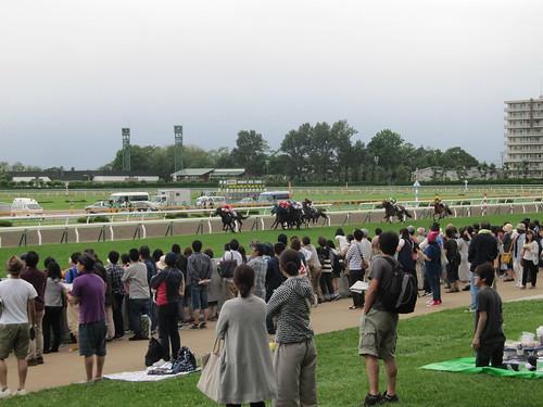 函館競馬場の芝生席からの風景