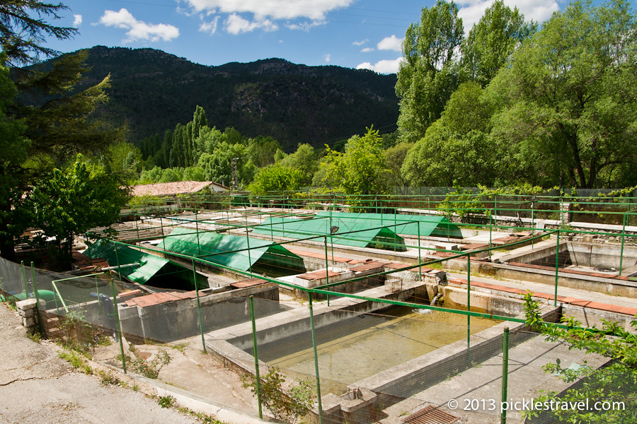 Piscicultura rio borosa a rural hike in central spain - Trout farming business family mountains ...