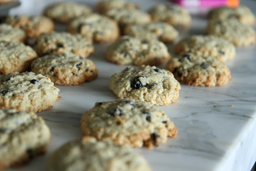 Coconut Blueberry COokies