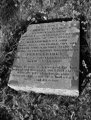 St Andrew's churchyard 7
