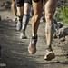 Patas Trail
