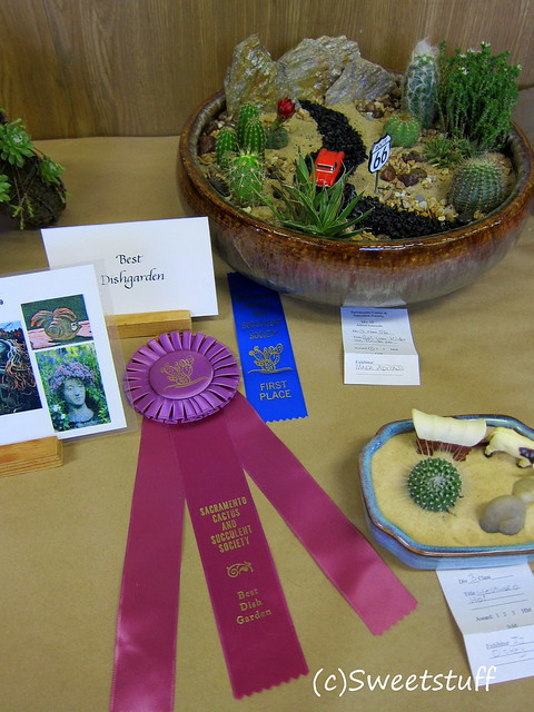 Best Dishgarden and 1st place Mara Aditajs