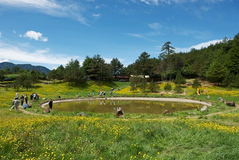 福壽山農場露營區3