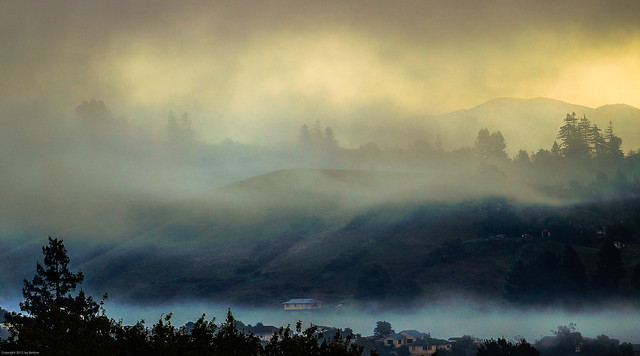 Foggy Morning on a Sunny Day, Nelson, New Zealand