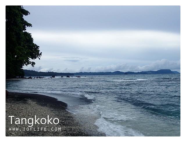 Pantai hutan tangkoko