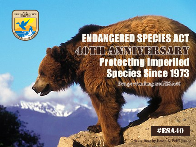 Endangered Species Act - 40th Anniversary from Flickr via Wylio