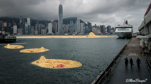 HONG KONG DUCK DISASTER by WilliamBanzai7/Colonel Flick
