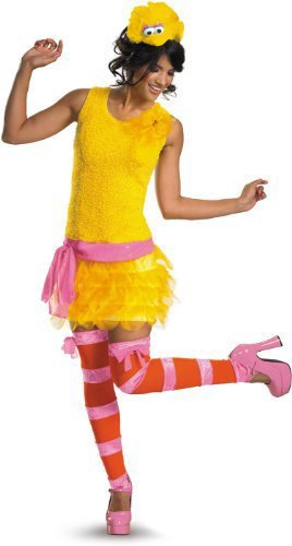 Big Bird Ladies Costume