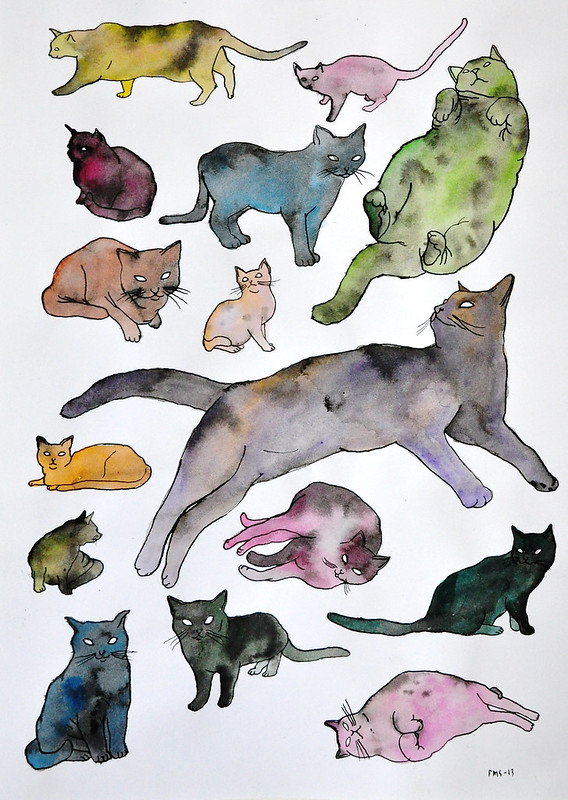 katter på papper