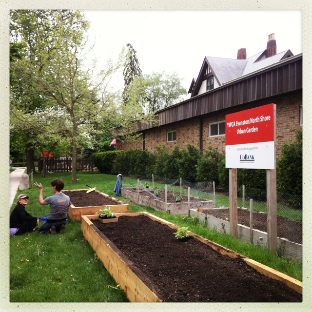 YWCA Volunteer planting day & planting status 5/17/13