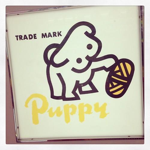 Puppy yarn! #hongkong