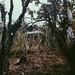 Cabaña entre Cultivo
