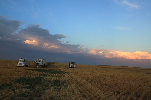 Service truck, Petey and our farmer's truck all in a row.