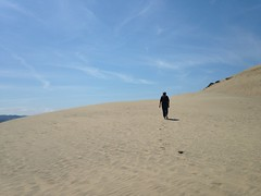 Pacific City Dune by TheTurducken