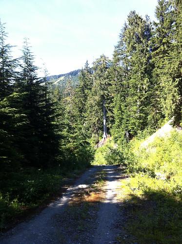 Mountain biking down Cypress Mountain