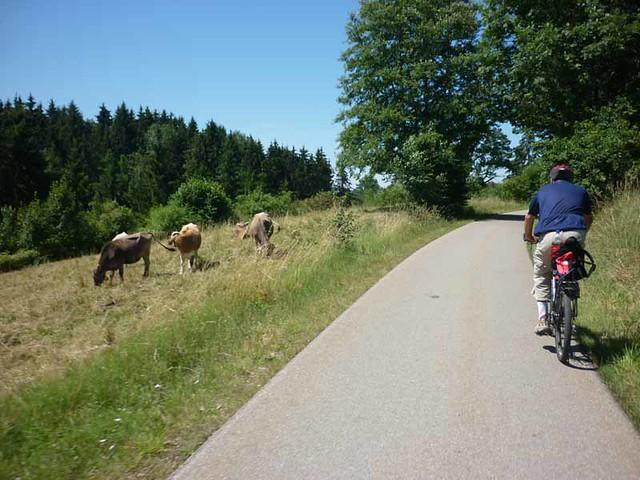 solar-bike-tour_34