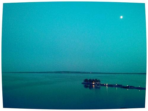 flickrandroidapp:filter=iguana hotelhelikon