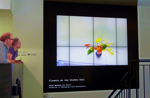 Mes fleurs en expo