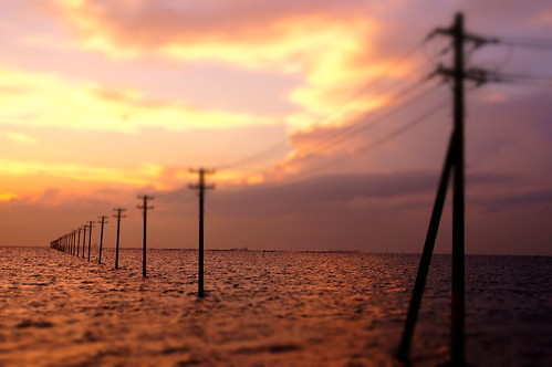 Miniature utility poles into the sea 17
