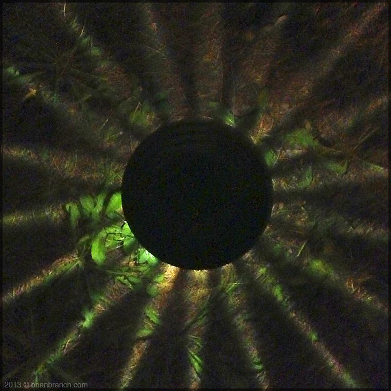 IMG_2379_solar_light