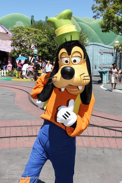 Disneyland Fun