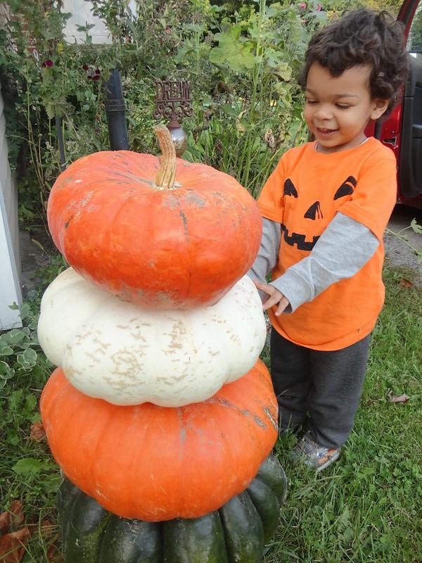 grammie got some pumpkins!
