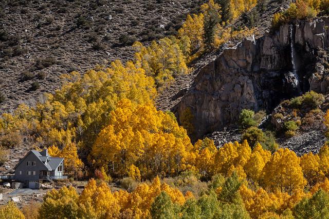 2013-10-05 Fall Foliage-8952