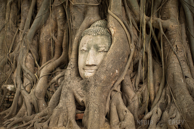 Face of Ayutthaya