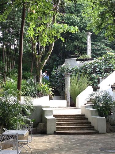 Pinto garden