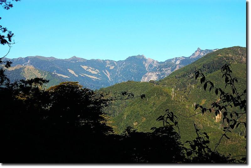 710林道遙望聖稜線 1
