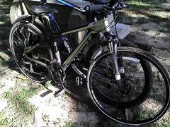 自転車を借りる by tomosunfish