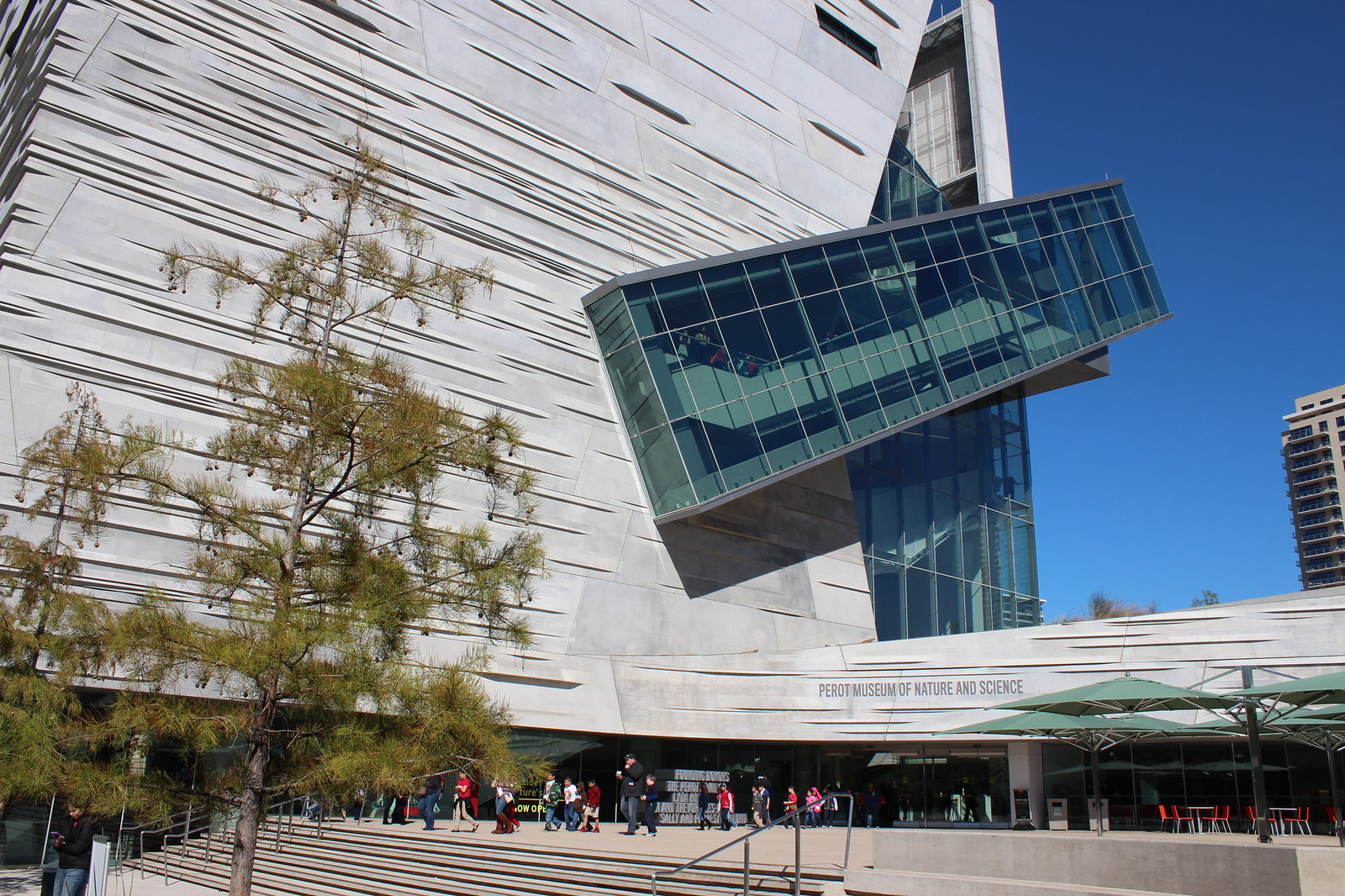 Perot Museum - Catherine Cuellar: The Dallas Art Scene