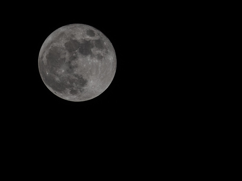 Full Moon Nov 17 2013
