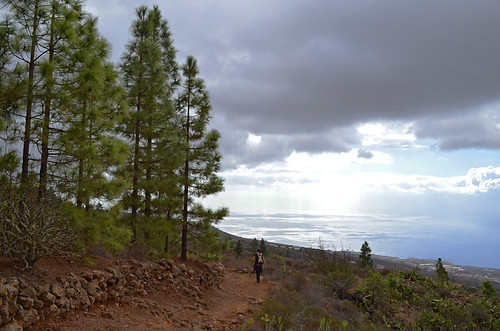 South West Hills, Tenerife