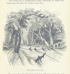 """British Library digitised image from page 527 of """"Explorations and adventures in Equatorial Africa; with accounts of the manners and customs of the people and of the chace of the gorilla, crocodile, leopard, elephant, hippopotamus and other animals. (Seco"""