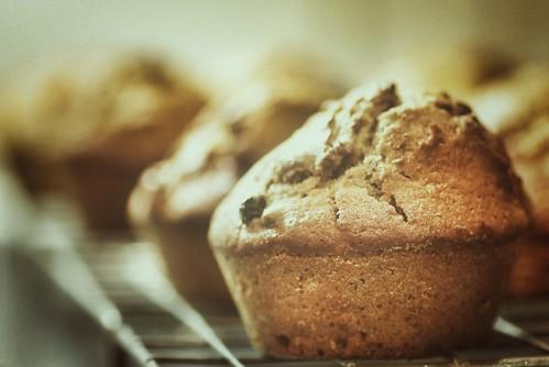 353/365 Christmas pudding muffins