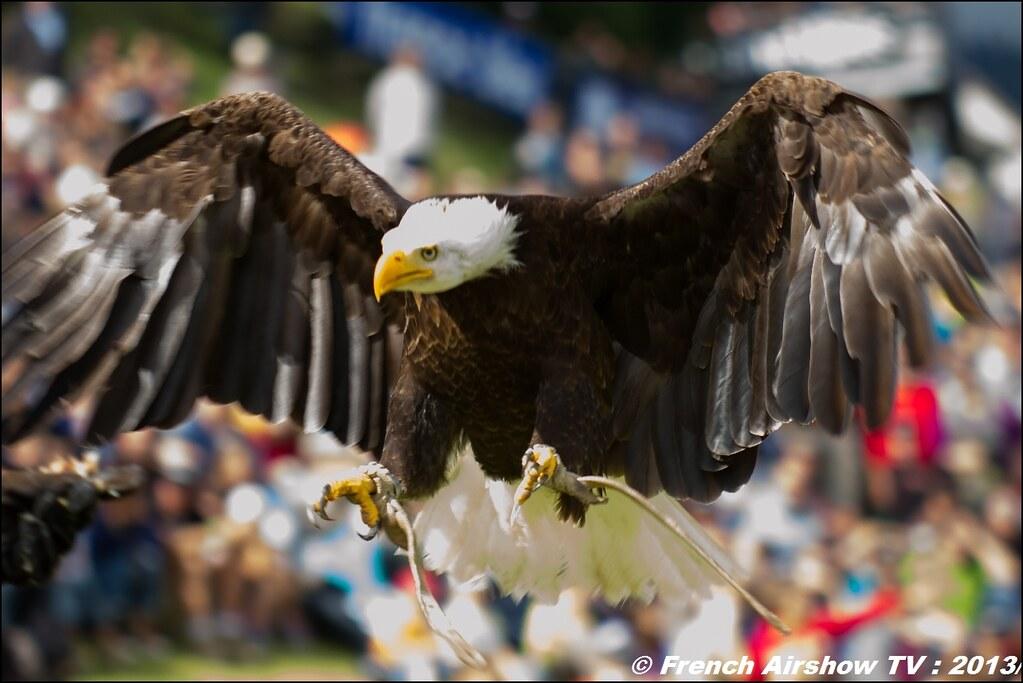 Les Aigles du Léman a Coupe Icare2013