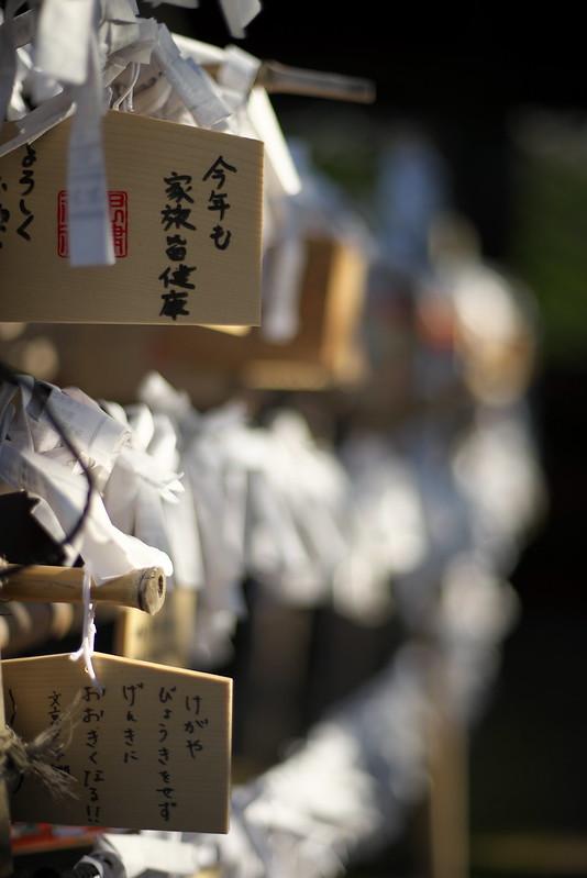 東京路地裏散歩 谷中・根津 根津神社 2015年2月15日