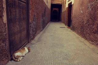 Marrakesch | Roland Krinner