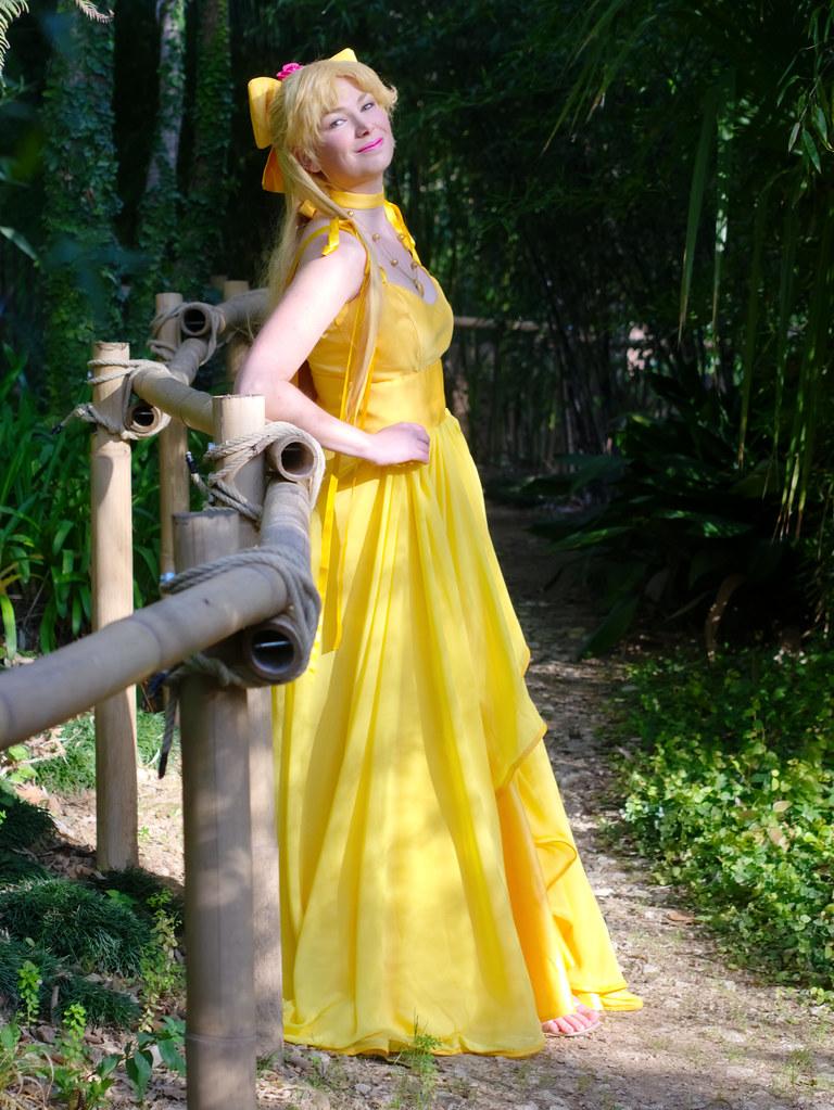 related image - Shooting Princess Venus - Parc de Baudouvin - La Valette du Var - 2015-01-18- P1980891