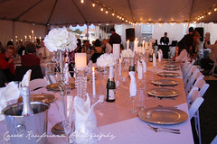meal(0.0), dinner(0.0), function hall(0.0), ceremony(0.0), wedding reception(1.0), restaurant(1.0), party(1.0), ballroom(1.0), centrepiece(1.0), banquet(1.0),
