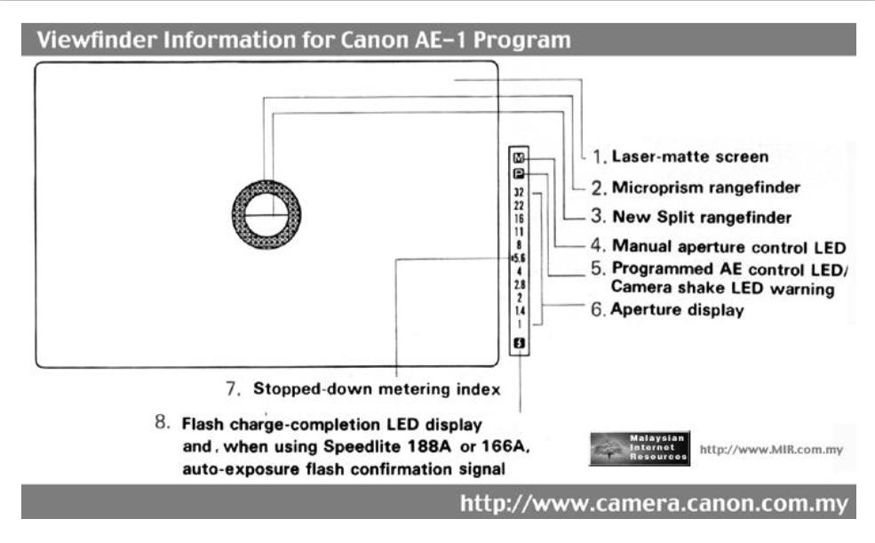 Adventures In Film Photography The Canon Ae 1 Program Analog Senses