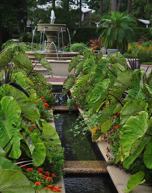 Channel Beds, Baker Perennial Garden