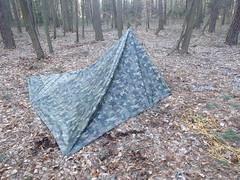 hammock(0.0), woodland(1.0), tent(1.0),