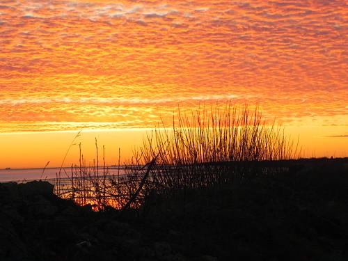 sunset graysharbor bowerman hoquiam