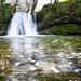 Janet's Foss by Michael Horsfield