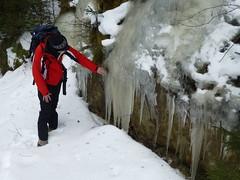 Eiszapfen am Wegesrand